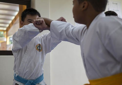 karate sek las americas