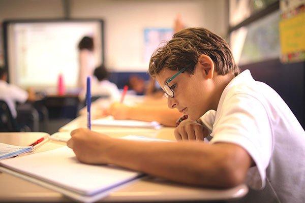 Educación Primaria SEK - Las Américas